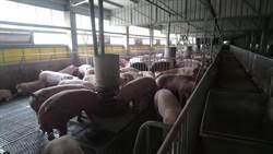 中市打造中部首座豬糞尿循環經濟園區