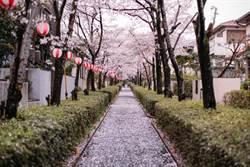 台灣遊客赴日爆天量 日本政府分析3大原因