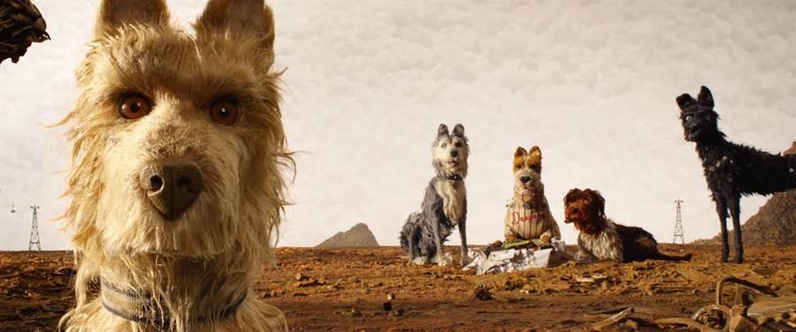 《犬之島》是威斯安德森繼《超級狐狸先生》後第二部動畫長片作品。(金馬提供)