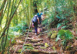 尾寮山步道 攀百岳訓練基地