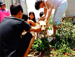 南華大學狗狗志工隊發揮巧思  讓「亭仔腳」成為上林社區的灶腳