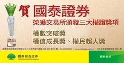 台灣權王-國泰綜合證券 電動車、AI夯 以權代股參與