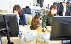外籍員工不適應日本