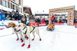 宇舶表旺狗年 為雪橇犬加油