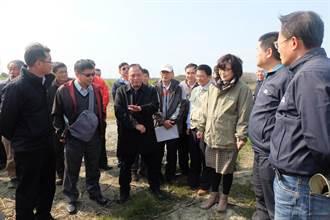 麥寮國家級智慧農業示範基地 農委會全力支持圖三
