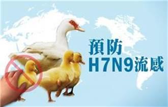 H7N9流感致死率4成  中國大陸新增1例
