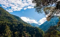 中部地區春節踏青首選 八仙山遊樂區帶您「森」呼吸