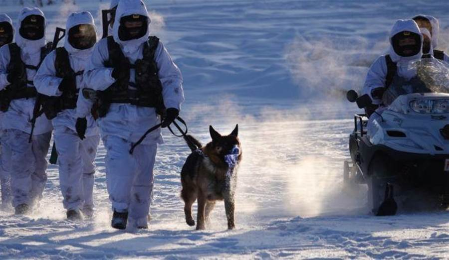 氣候太過嚴寒,軍犬流出的口水都立刻結成霜。(圖/網路)