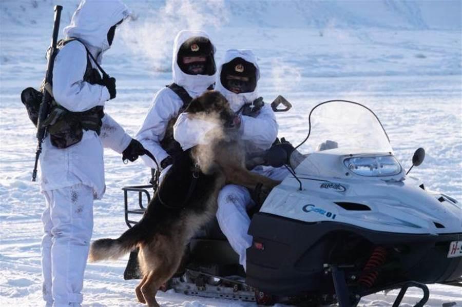 耐凍、抗寒的軍隊官兵穿著雪地偽裝服,和僅僅裹著一身毛皮的戰鬥軍犬,在白茫茫的雪地中騎乘雪地摩托車。(圖/網路)