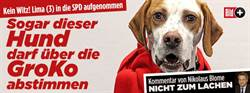 狗可入黨  德國《畫報》藉此凸顯社民黨黨員投票容易造假