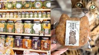 貓奴們請注意!大量喵星人出沒日本東京淺草仙貝老店