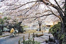 街巷的京都(下)