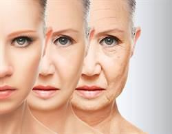 老化真凶就是「他」 專家提3食物對抗