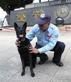 建國科大警衛犬巡邏校園 流浪犬避走