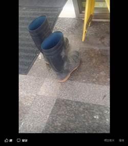 小七遇見一雙沾土雨鞋 赤腳阿伯讓人反省了