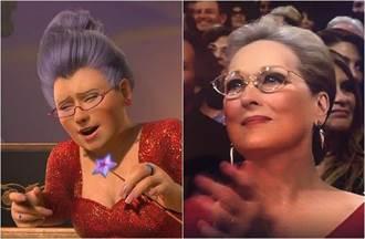 奧斯卡禮服參考《史瑞克》?梅莉史翠普變神仙教母