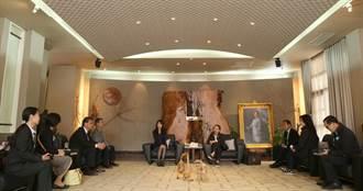 日本千葉縣代表團參訪燈會,建立好友誼