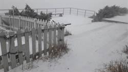 玉山飄起三月雪 主峰、北峰銀白