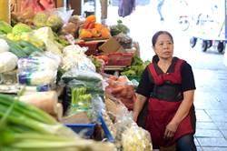 「台灣之光」善心賣菜嬤陳樹菊 病倒菜攤1個月未賣菜