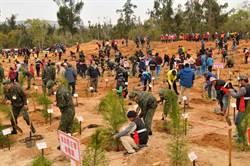 金門軍民種樹綠美化  火燒埔再現盎然綠意