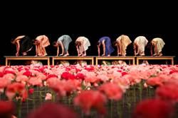 萬朵康乃馨花舞台 台中國家歌劇院《康乃馨》帶來心悸動