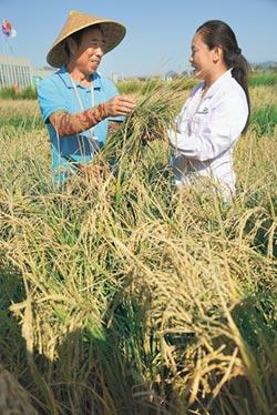 養活世上20%人 陸農業研究創奇蹟
