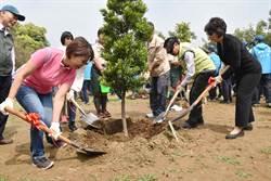 嘉義市植樹活動 500株桂花1小時內被發票下架