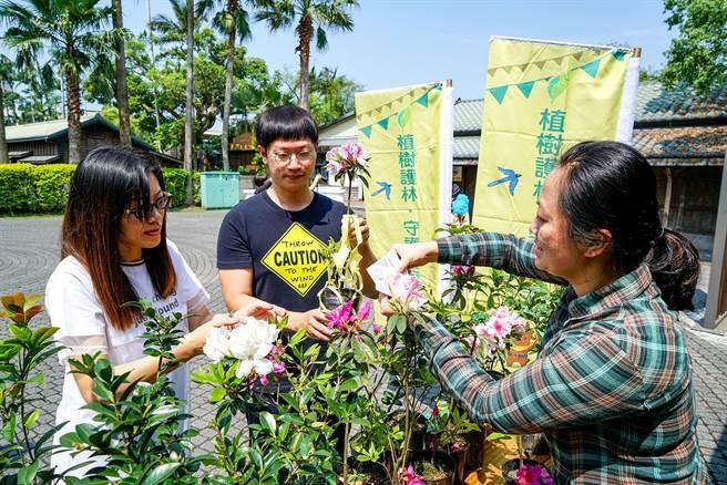 3月21日國際森林日,羅東林管處在當天將舉辦6場聯合贈苗活動,民眾可憑3張今年的發票,並自備環保袋兌換苗木。(李忠一攝)