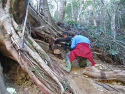 阻止盜伐有功 林務局表揚傑出巡山員