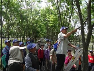321國際森林日 屏東林管處辦修木活動