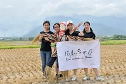 尋找感動地圖  北商大學生到台東打工換宿體驗米鄉生活