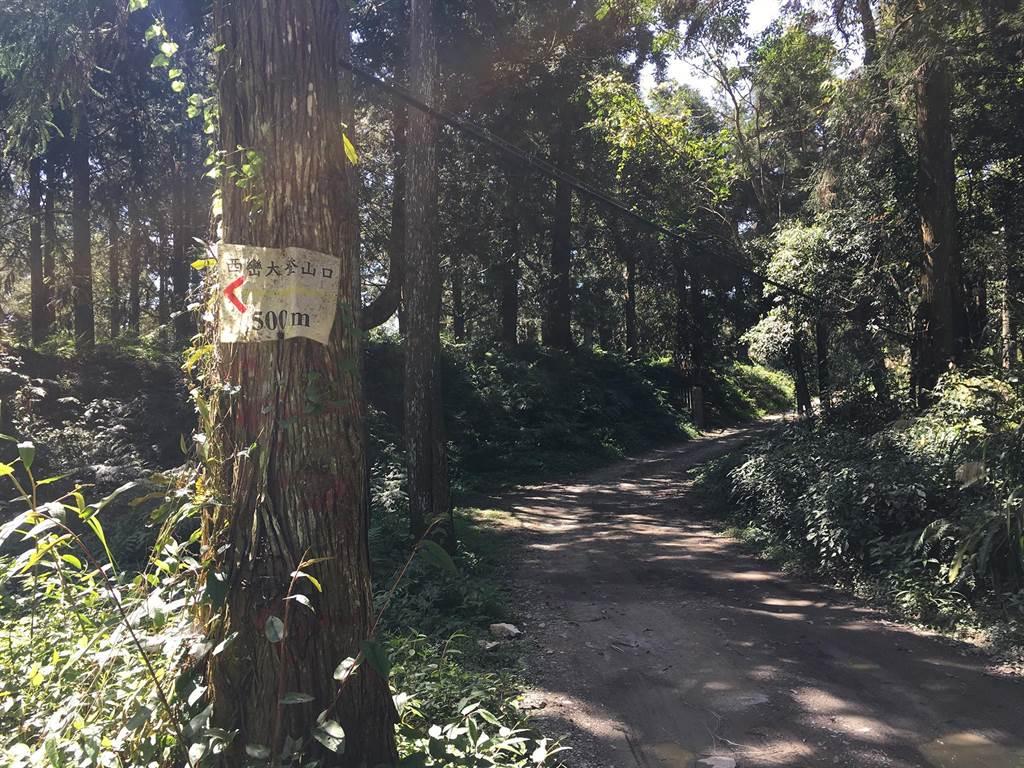 登山口在17K轉支線進入1公里處。(沈揮勝攝)