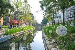 治水吸睛也吸金!中市獲前瞻37億補助