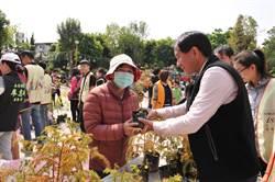 撞月亮樹種台灣杉 埔里慈善團體贈樹苗