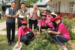 食農教育深入校園 新化口埤實小花圃變菜園