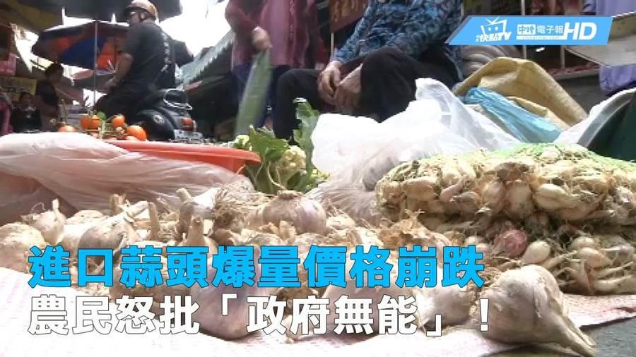 進口蒜頭爆量價格崩跌 農民怒批「政府無能」!