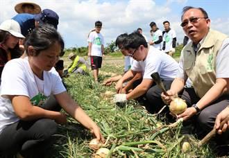 農委會力推「農業打工」林聰賢領150名學生下田採洋蔥