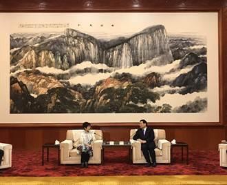 洪秀柱陝西行 稱「分裂始終會讓兩岸民眾唾棄」