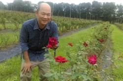 神農獎花農獲平反 有機玫瑰園遭鄰田汙染法官判免罰