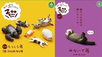 《ZooZooZoo》休眠動物園第6彈強勢回歸,這一次就算是用手遮著也要睡!