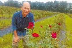 有機玫瑰園遭鄰田汙染 免罰