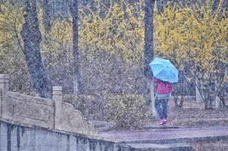 罕見!北京清明降暴雪 4月氣溫又回0度