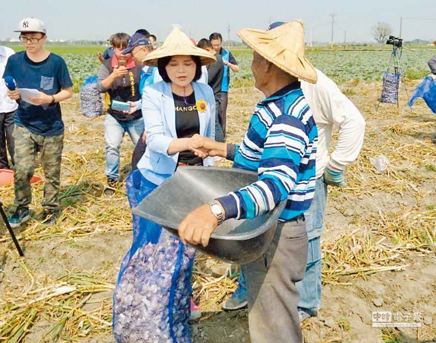 蒜價跌到成本價以下,立委張麗善(前左)關心蒜農採蒜情形。(本報資料照片)