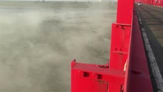 台西鄉褐害     環團:濁水溪沙塵還是元凶