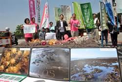環保團體 凱道高喊「小英總統救藻礁」