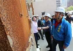 丁守中、王鴻薇會勘大巨蛋 除鏽修繕費逾17億元