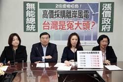 2倍價格招標離岸風電 藍委批把台灣當冤大頭