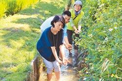 飯店攜手社區 推12套生態遊程