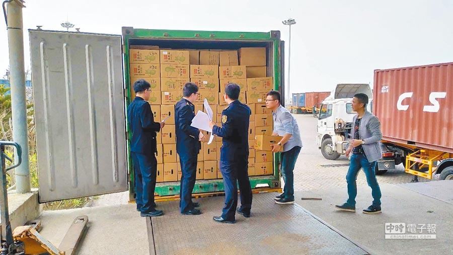 大陸國檢抽驗首批以電商模式運來的台灣水果。(平潭兩岸海外倉提供)