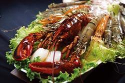 新.餐.廳-龍蝦進口商投資 龍石鍋物超值開賣